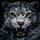 SNOW_LEOPARD_oil_on_canvas_30x30_II_2012