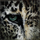 SNOW_LEOPARD_oil_on_paper_11x11_2012