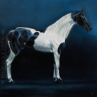 BOLERO_HARAS_KITANDA_oil_on_canvas_40x40_2012