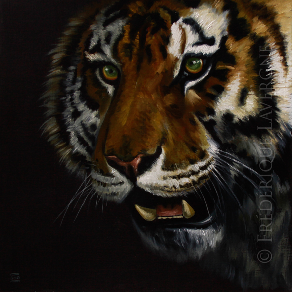 TIGRE oil on paper 25x25 2012